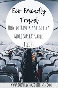 Eco-Friendly Travel: How to Have a Slightly More Sustainable Flight