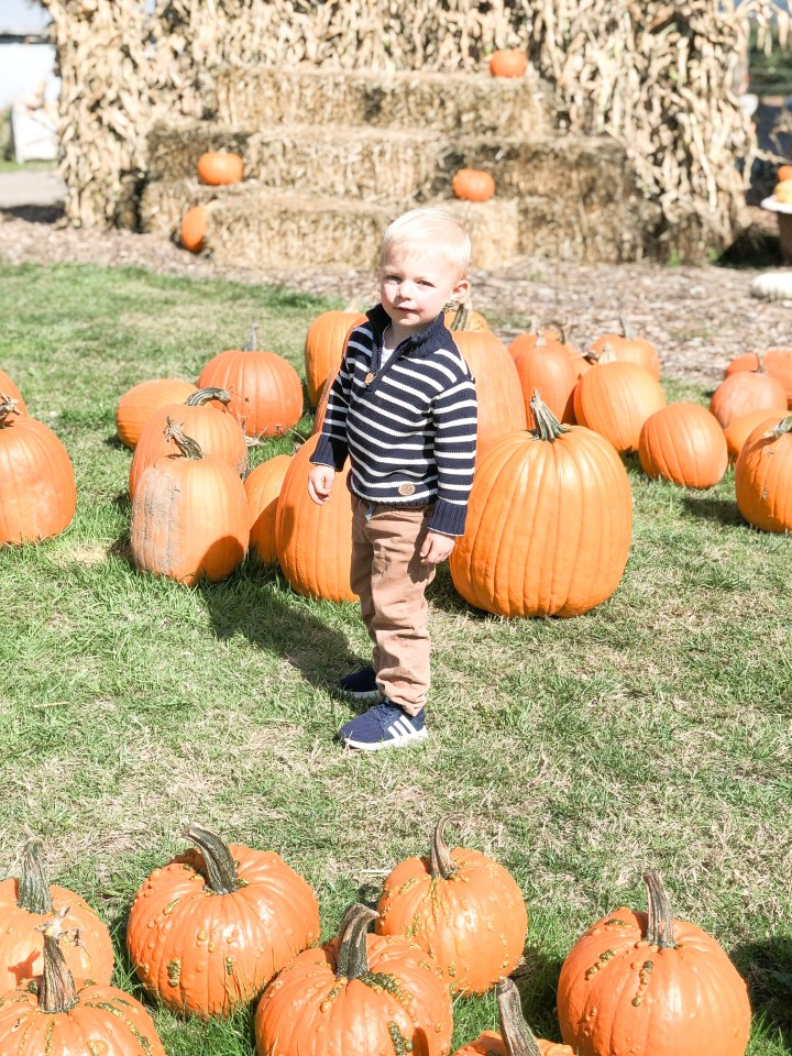 toddler boy fall capsule wardrobe
