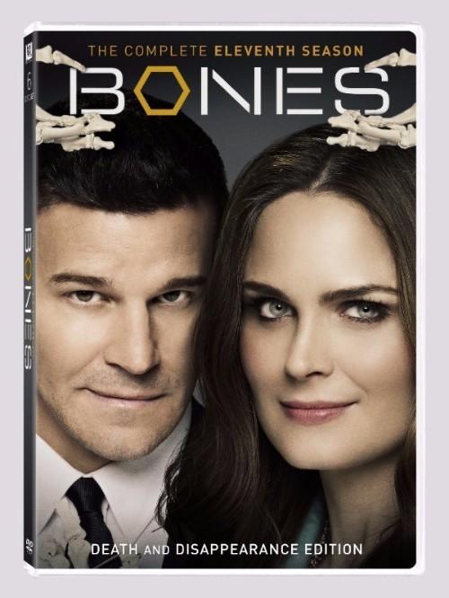 bones-11