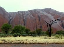 Uluru in the rain