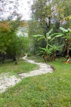 Kawau Lodge Garden Path