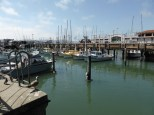 Marina at Fisherman's Wharf