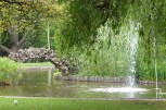 Fountains and lawns
