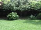 garden26may (3)