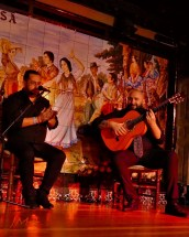 JMA_Flamenco_07