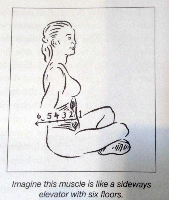 Image of an illustration of a woman sitting cross legged for muscles excercises