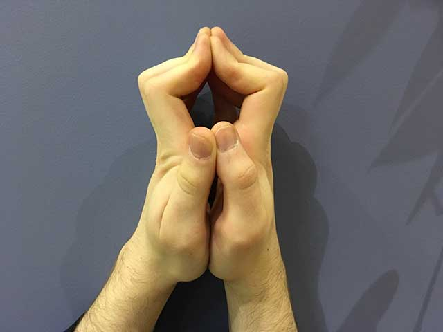 Image of hands in a steeple hands yoga strengthening position
