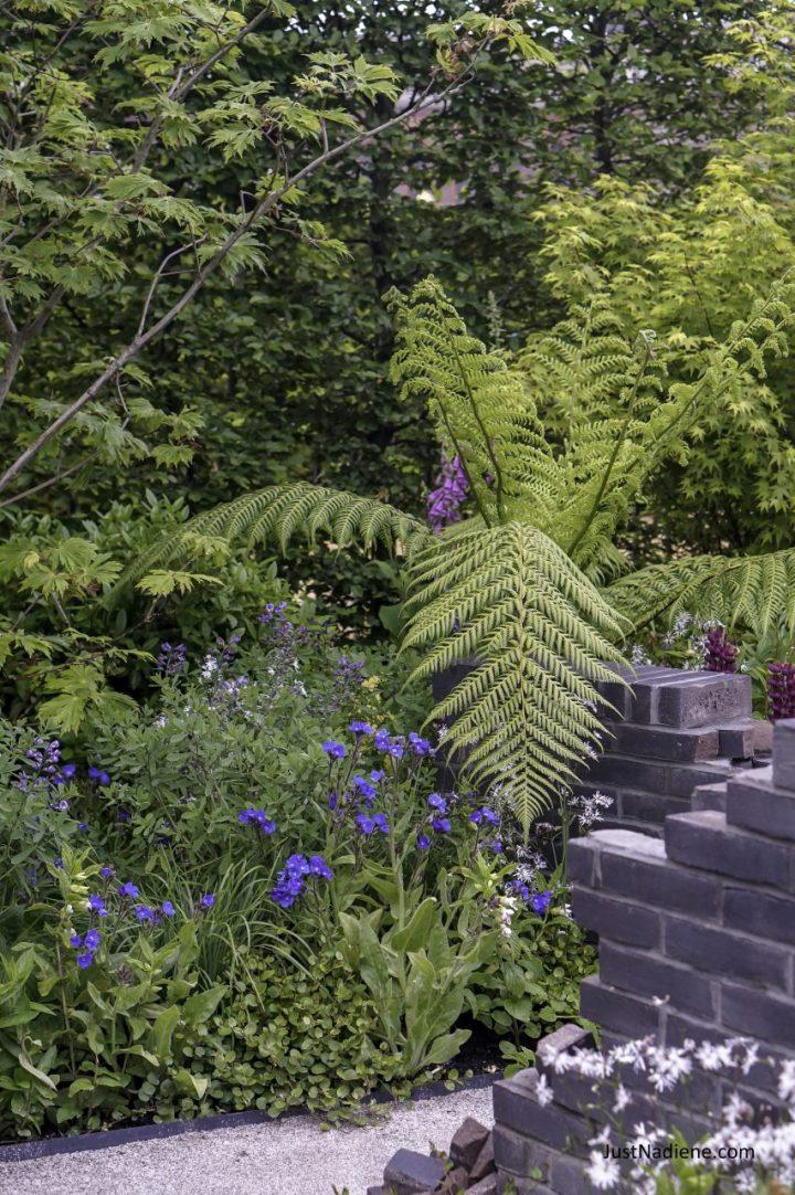 RHS Chelsea HIV Garden