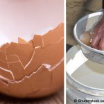 You'll never throw away another eggshell after reading this!