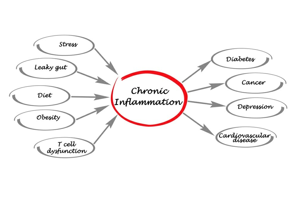 Foods that Fight Chronic Inflammation