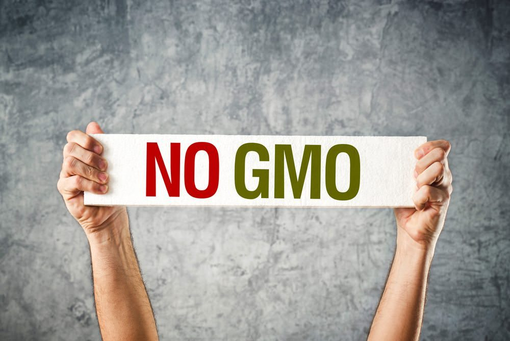WHY I JUST SAY NO TO GMOS