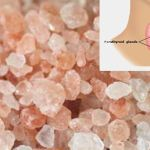 7 Exotic Salts That Boost Nutrient Levels And Improve Thyroid Function