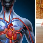 10 Yoga Poses that will RELIEVE tension in chest and heart