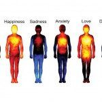 How Emotions Manifest in Your Body