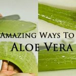 Mind Blowing Reasons Why Aloe Vera Is A Miracle Medicine Plant. You Will Never Buy Expensive Products Again!