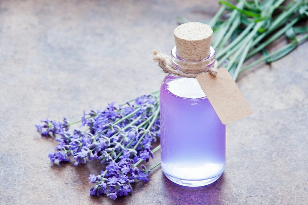How Lavender treats Anxiety