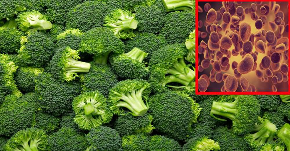 The Remarkable Health Benefits of Broccoli, and How to Fight Cancer, Reduce Arthritis, and Protect Your Kidneys With It!