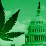 For The First Time Ever, The Federal Government Is Referring To Marijuana As Medicine