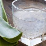 7 Reasons to You Should Drink Aloe Vera Juice