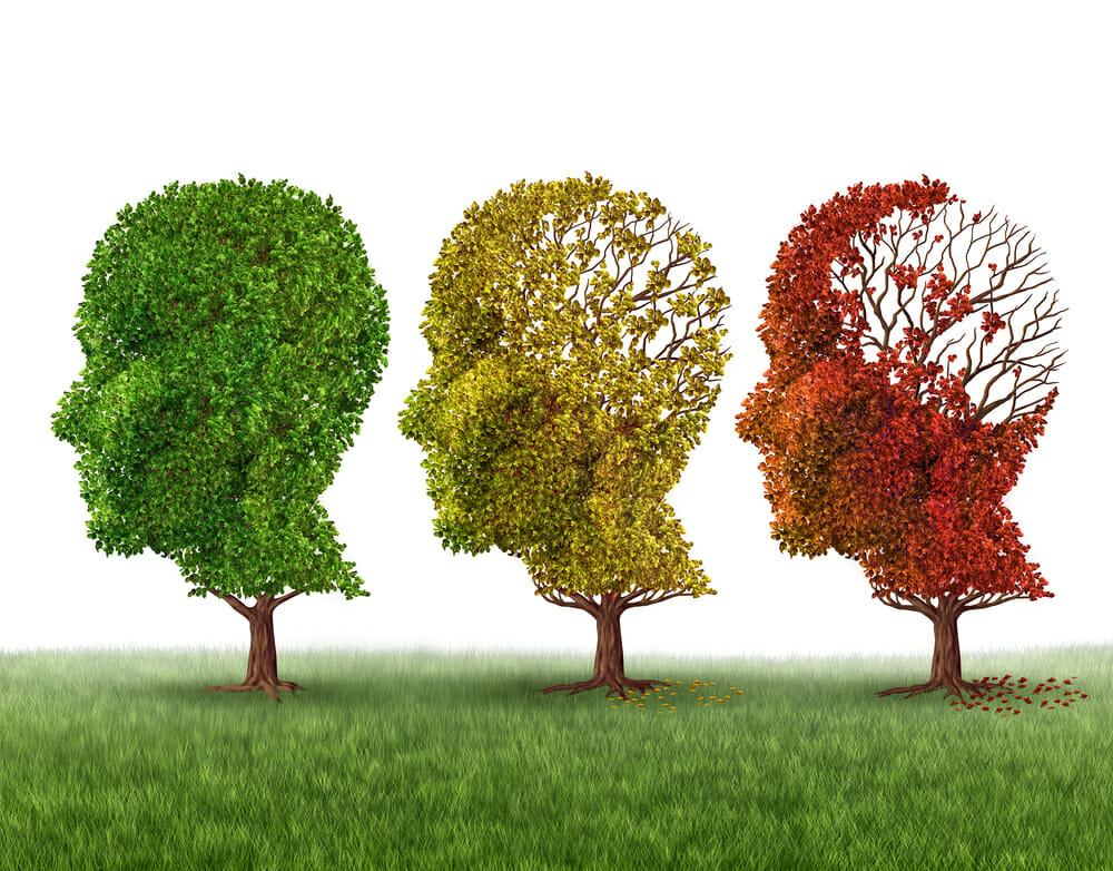 Reduce Your Risk for Alzheimer's Disease