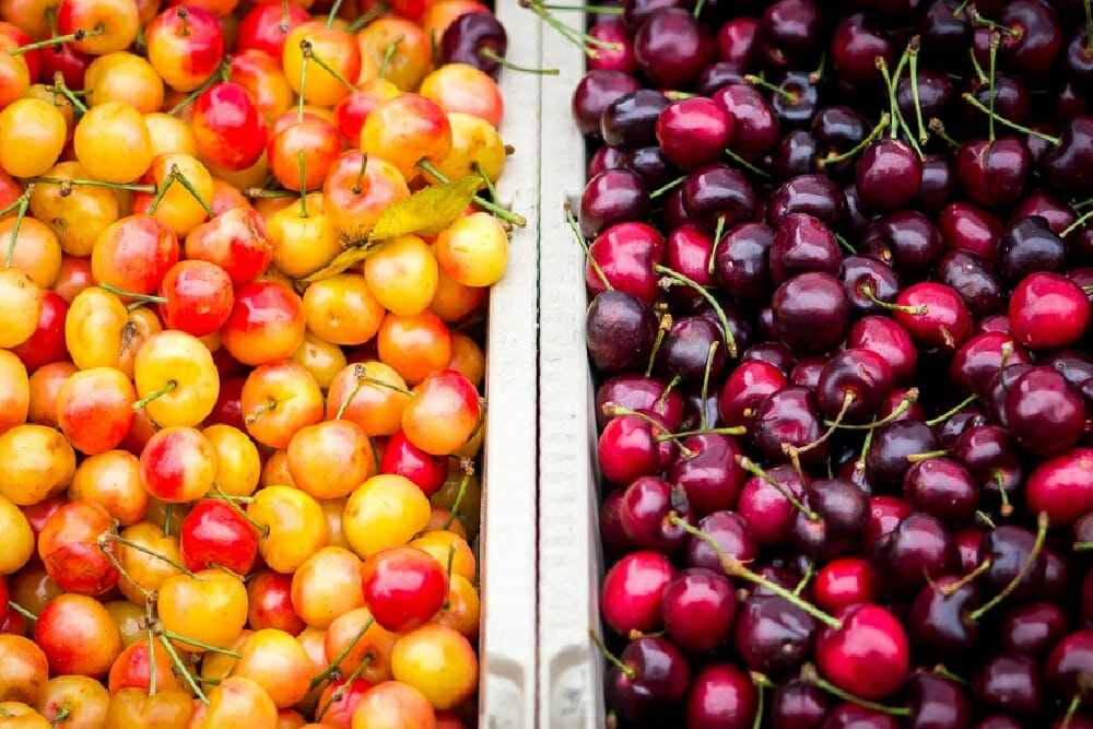 Five reasons to eat more of these super fruit cherries