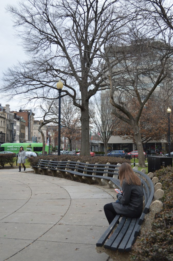 I found this woman sitting on a bench in the DuPont circle on her phone during her lunch break.