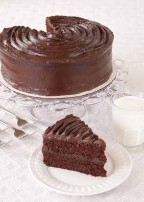 Double Chocolate Cake Picture
