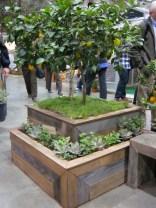 SF Flower & Garden Show