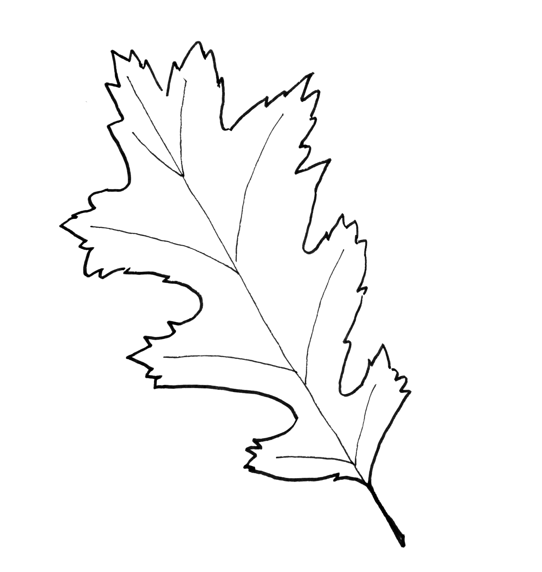 Fall Leaf Pattern Printables
