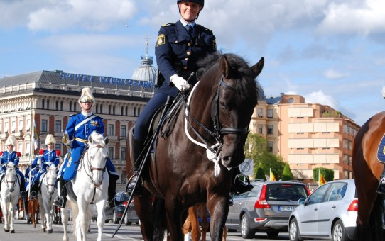 mounted policewoman on parade