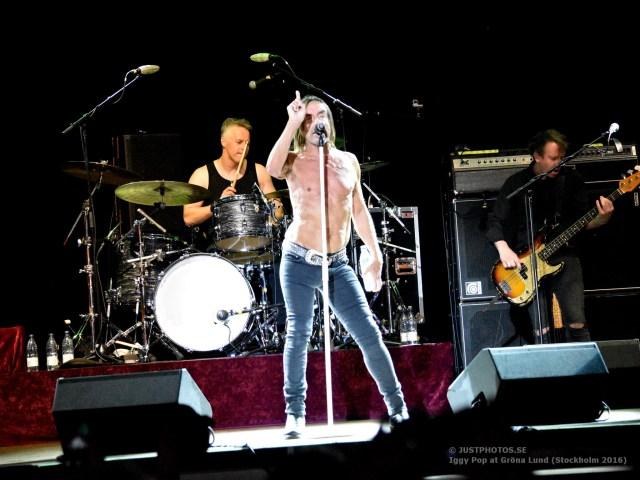 Iggy Pop concert 2016 in Stockholm9
