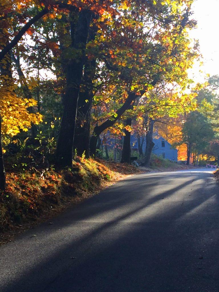morningwalk 4