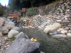 Thermal Springs in Pucon