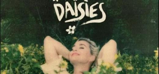katy perry daises