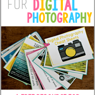 Digital Photography Tips for Beginners