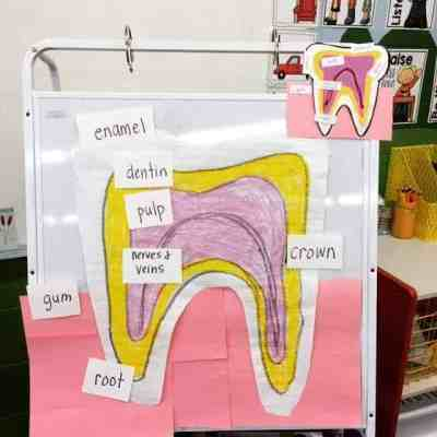 Dental Health Lessons and Activities that Will Engage Your Students