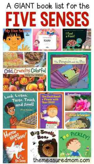 five senses books