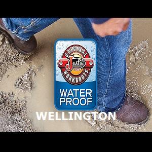 WELLINGTON / PULL ON WORKBOOTS