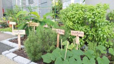 ParkRoyal-Pickering-Garden