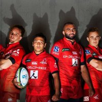 Sunwolves-feature