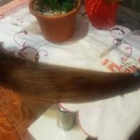 European hair for sale brown 22'inch