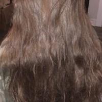 Beautiful Young Teen Virgin Thick Brown Hair