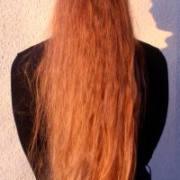 20 inches long, healthy, wavy, virgin, light auburn hair