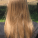 Virgin blonde hair, 14-inches long, 2.5 inches around, male
