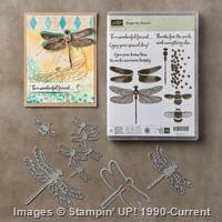 bundle-dragonfly-dreams