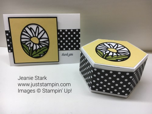 Stampin Up Window Box Thinlits ideas - Jeanie Stark StampinUp