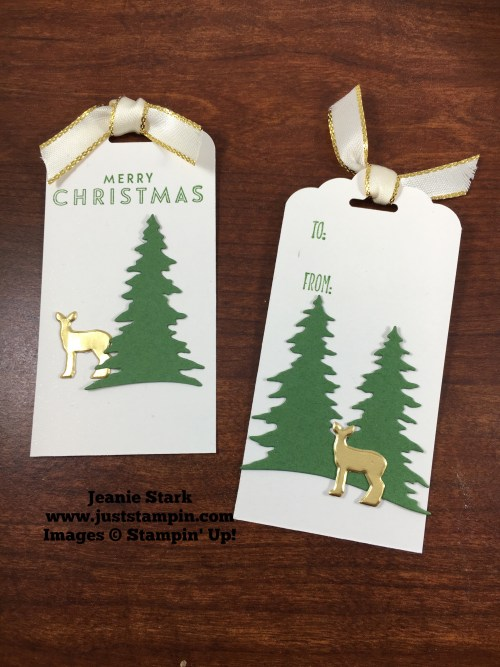 Stampin Up Card Front Builder Thinlits tag ideas - Jeanie Stark StampinUp