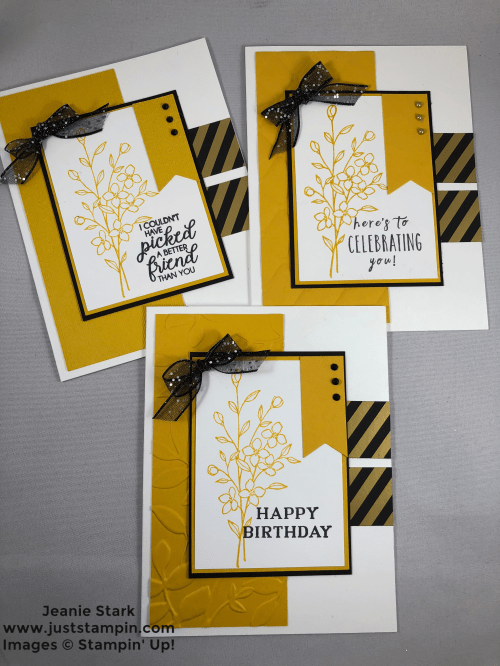 Stampin Up Touches of Texture embossed Birthday card idea - Jeanie Stark StampinUp