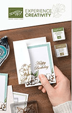 Stampin Up Beginner Brochure Catalog and Idea Book - Jeanie Stark StampinUp