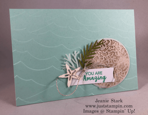 Stampin Up Paper Pumpkin and High Seas alternative amazing card idea - Jeanie Stark StampinUp